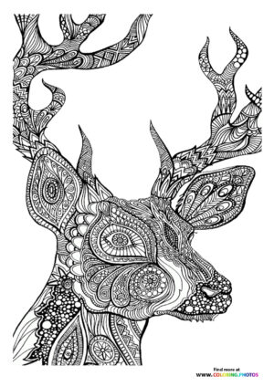 Deer coloring page for adults