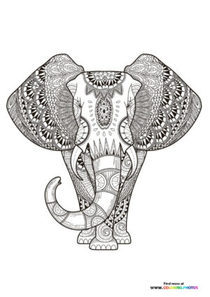 Indian elephant coloring page for adults