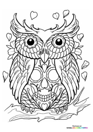 Own on a skull coloring for adults
