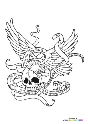 Skull and snake coloring for adults