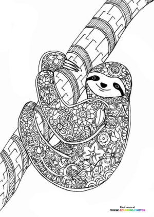 Sloth coloring page for adults