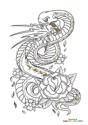 Snake and rose coloring for adults