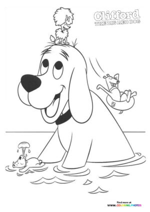Clifford swimming with friends